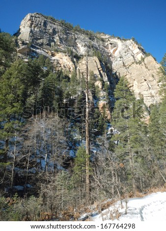 Winter along Call of the Canyon Trail in Arizona - stock photo