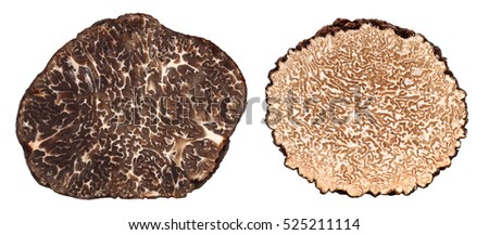 Winter and summer black truffle cross section difference