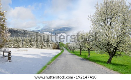 winter and summer changing season, weather concept with road - stock photo