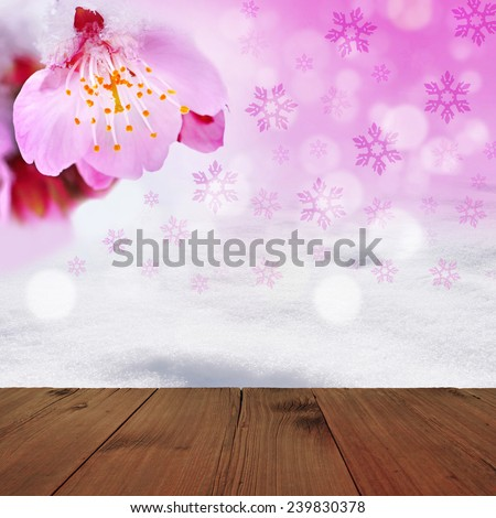 winter background/Cherry blossoms and snow - stock photo