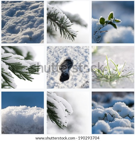 winter Background collage - stock photo