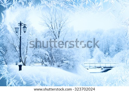 Winter background, landscape. Winter trees in wonderland. Winter scene. Christmas, New Year background - stock photo