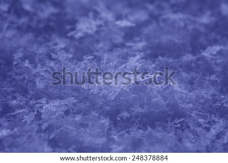 Winter background. Snowflakes close up. - stock photo