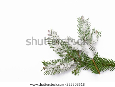 Winter background with snow-covered tree. - stock photo