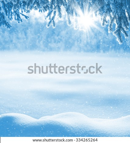 Winter background with snow-drifts and the christmas tree in frost - stock photo