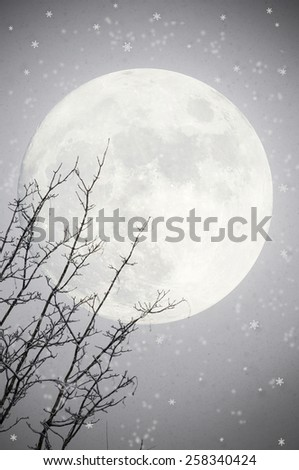 Winter background with tree and moon - stock photo