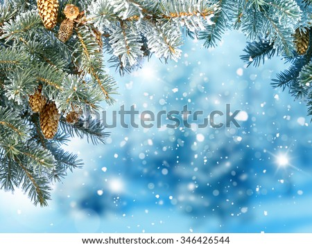 Winter Christmas background with fir tree branch and cones  - stock photo
