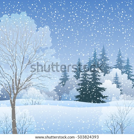 Winter Christmas Holiday Woodland Landscape, Forest with Fir and Deciduous Trees and Snow