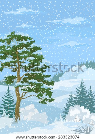 Winter Christmas Woodland Landscape with Pine and Fir Trees, Blue Sky with Snow and Clouds - stock photo