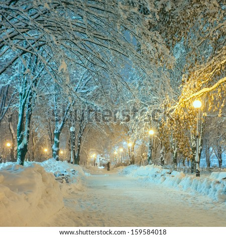 winter city park - stock photo