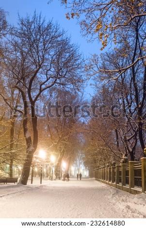 winter city park - stock photo