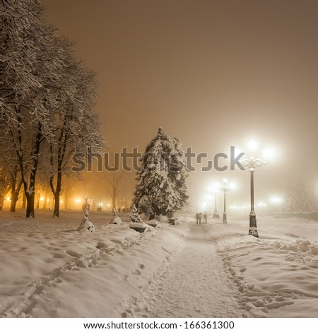 winter city park. Kiev. Ukraine. - stock photo