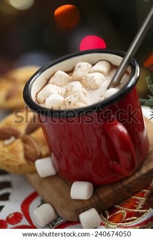 Winter cocoa drink - stock photo
