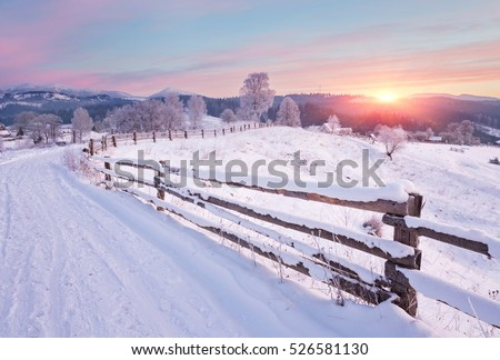 Winter country landscape with timber fence and snowy road into evergreen forest