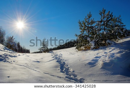 winter day with sun and clear blue sky - stock photo