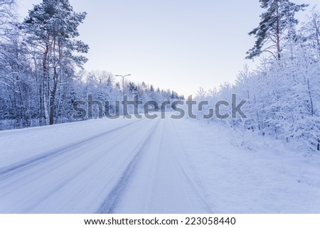 Winter evening forest with road covered with snow - during sunset - stock photo
