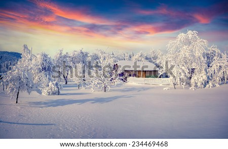 Winter fairytale, heavy snowfall covered the trees and houses in the mountain village.  - stock photo