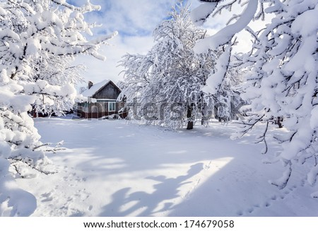 Winter fairytale, heavy snowfall covered the trees and houses in the mountain village. Strymba village, Carpathian, Ukraine, Europe. - stock photo