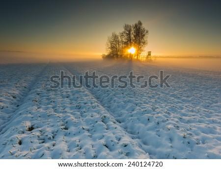 winter field at sunrise landscape - stock photo