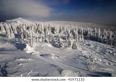 Winter fir forest in mountains at Urals, Russia - stock photo