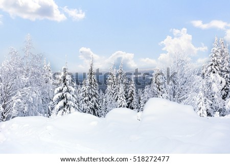 Winter forest against mountains