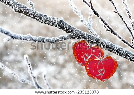 Winter Forest. heart - stock photo