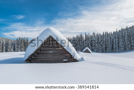 Winter forest landscape with cottages under the clear sky - stock photo