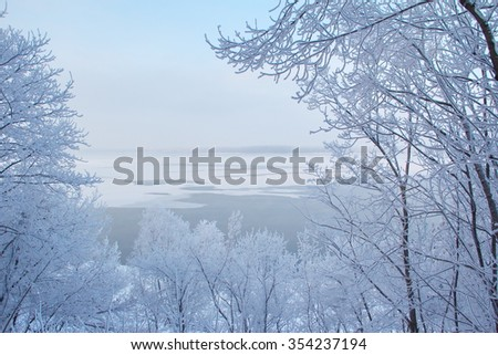 Winter forest with trees covered snow at the river