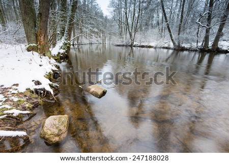 Winter forest with wild river. Polish landscape - stock photo