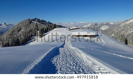 Winter hiking and sledging path on Mt Hohe Wispile, Switzerland