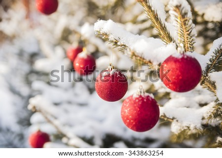 winter holiday background of Christmas Tree with red snowy toys on a branch of spruce sheltered snow - stock photo