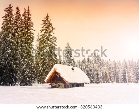 Winter holiday house in slovenia alps-Europe
