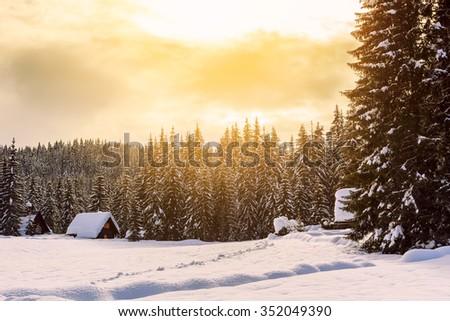 Winter holiday house in slovenia alps-Europe - stock photo