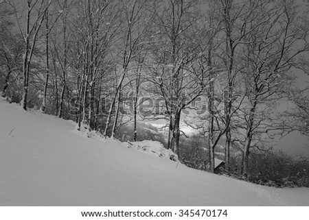 winter in carpatians mountains, Romania
