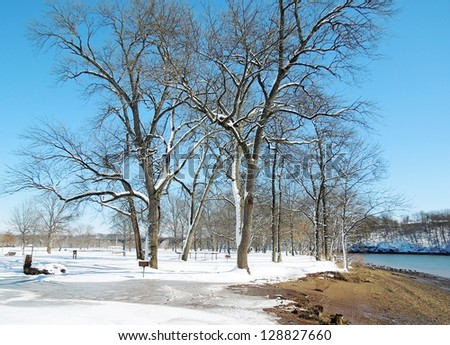 winter in the park - stock photo
