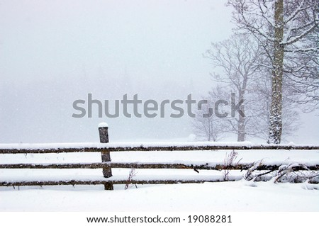 Winter in the park. With space for text - stock photo