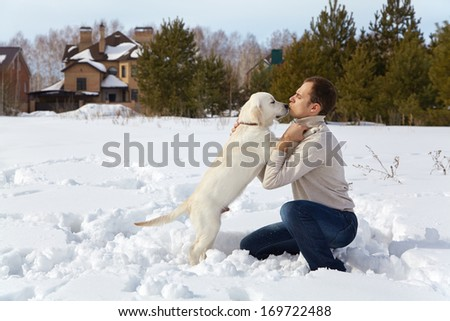 Winter Labrador retriever puppy dog for a walk with the owner - stock photo