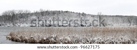 winter lake and marsh panorama with snow covering