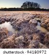 Winter landscape across fields with frosty grass and bog frozen over with trees on horizon - stock photo