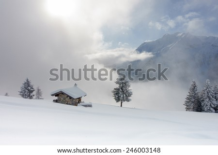 winter landscape after a snowstorm - stock photo