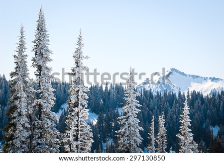 Winter Landscape and Mountain Range at Mount Rainier National Park - stock photo