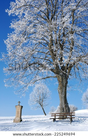 winter landscape at swabian alp Germany with rime