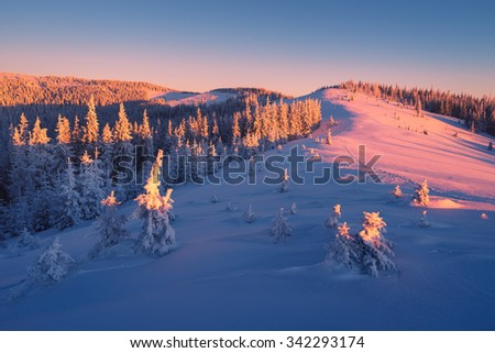 Winter landscape. Beautiful sunrise in the mountains. Spruce forest in the hills. Carpathians, Ukraine, Europe - stock photo