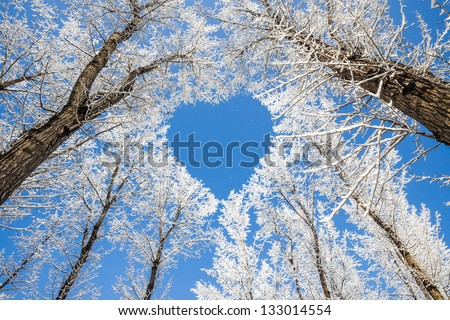 Winter landscape,branches form a heart-shaped pattern - stock photo