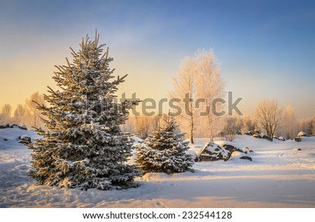 winter landscape: clear cold morning - stock photo