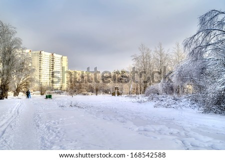Winter landscape. Edge of the snowy woods on a sunny day - stock photo
