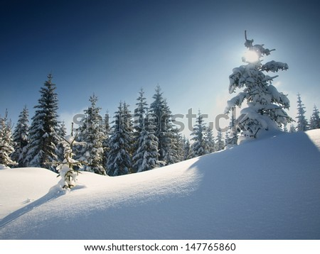 Winter landscape from Izerskie Mountains, Sudety Mountains, Poland.