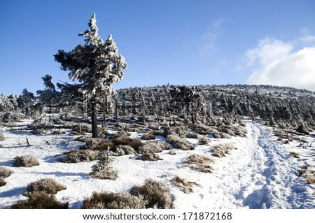Winter landscape in Czech mountains - stock photo