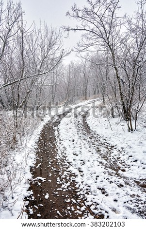 winter landscape in inclement weather