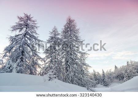 Winter landscape  in mountains Julian Alps, Slovenia